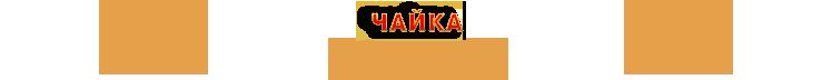 Заказать классический стриптиз, романтический стриптиз, гламурный стриптиз, стриптиз на 23 февраля, стриптиз от снегурочки на Новый Год в исполнении Чайки