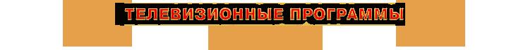 Телевизионные программы с участием Звезды стриптиза